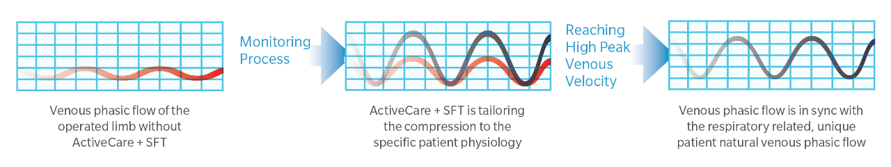 ActiveCare + S.F.T.System Flow Chart